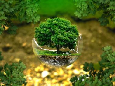 analiza sostenible